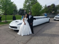 a-limo-world-corvette